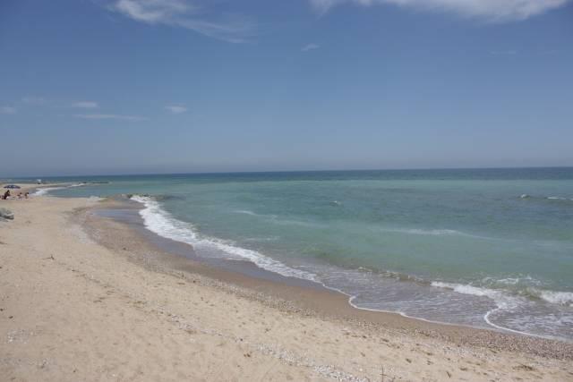 одесса отдых у моря сентябрь показывают свои пышные