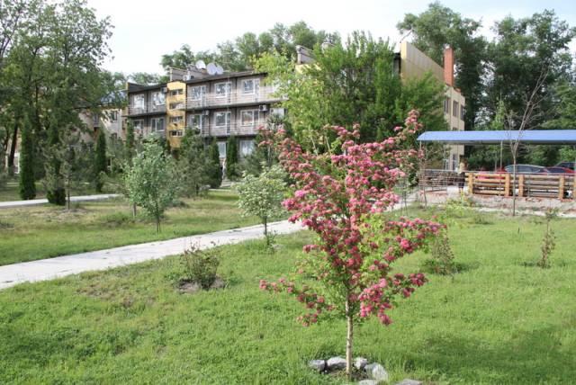 Благоприятные дни для посадки растений календарь